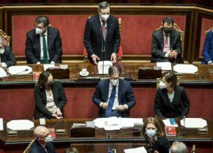 Draghi senato 2